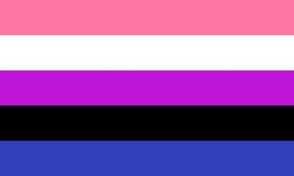 1024px genderfluidity pride flag svg