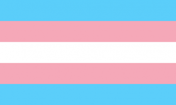 1024px transgender pride flag svg