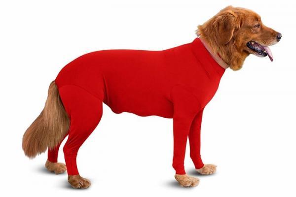 dog onesies anti shedding amazon 1 5d0b2bb95f254 700