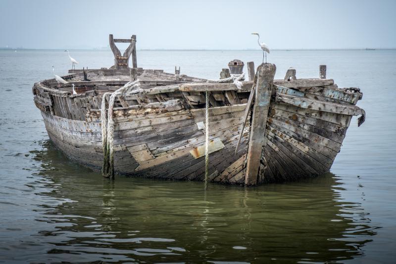1542073656787 bird boat fisherman 247429