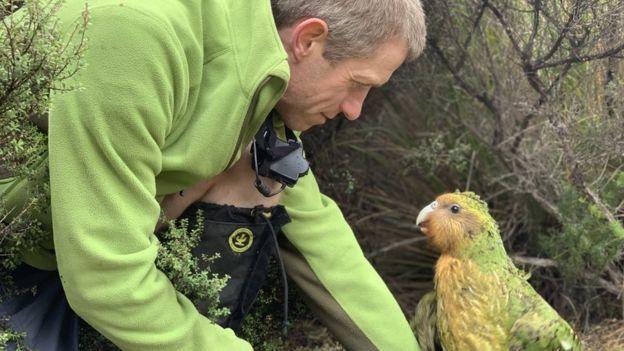 kakapo than thien