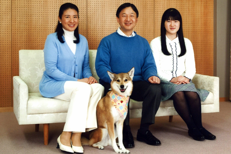 jp royal