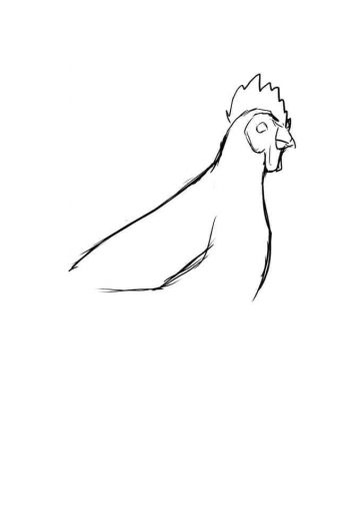 lost bird bo tranh ve dung hoi thuc designer 16