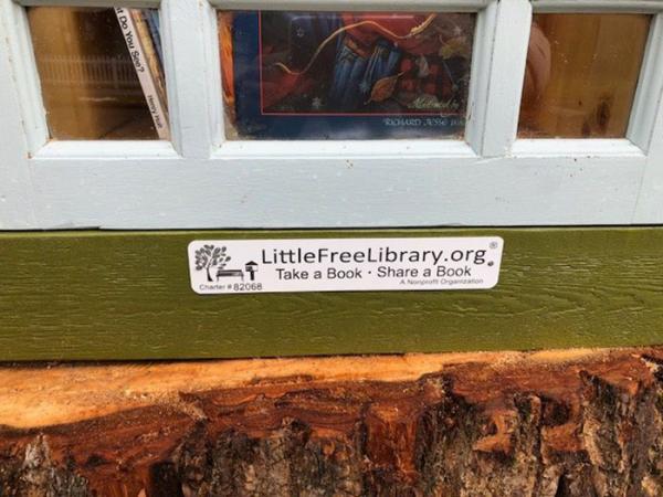 Nghệ sĩ biến thân cây hơn 110 năm tuổi sắp mục thành thư viện mini thay vì đốn hạ
