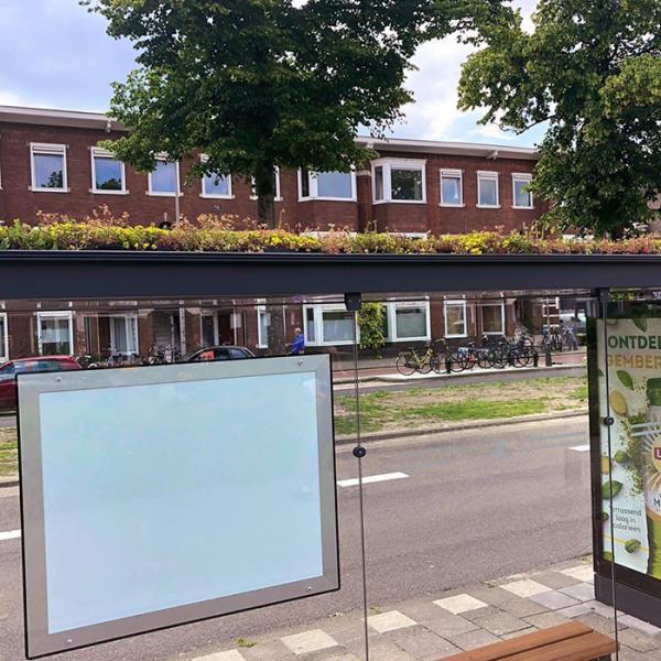 city in netherlands transforms bus stops into bee stops utrecht 5d284efc01c42 700