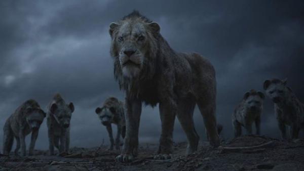 the lion king still 1236662