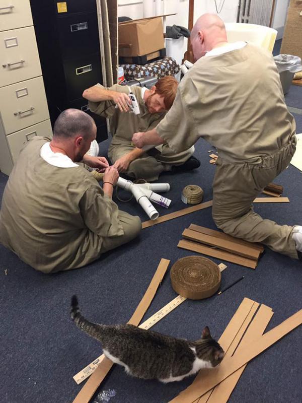 inmates pet rehabilitation pendleton correctional facility forward 14