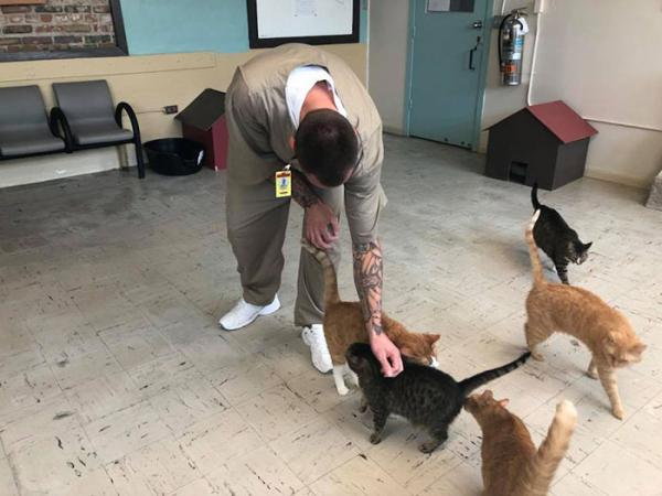 inmates pet rehabilitation pendleton correctional facility forward 16