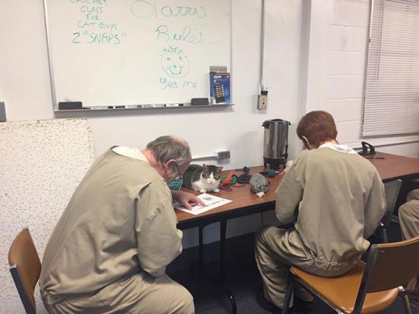 inmates pet rehabilitation pendleton correctional facility forward 18