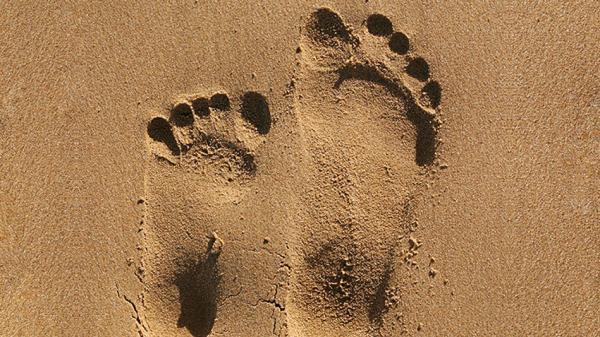201305 orig footprints 949x534
