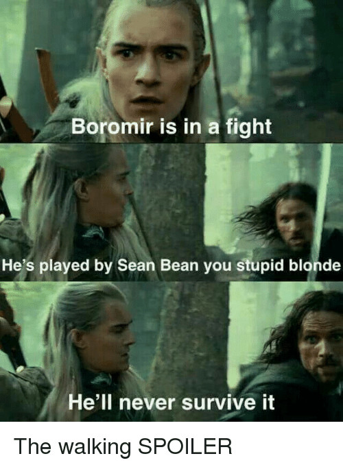 boromir is in a fight hes played by sean bean 38646306