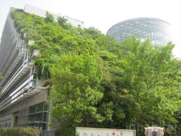 acros japan green roofed building 5