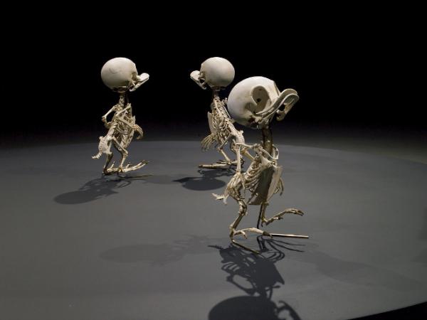 cartoon skeletons5