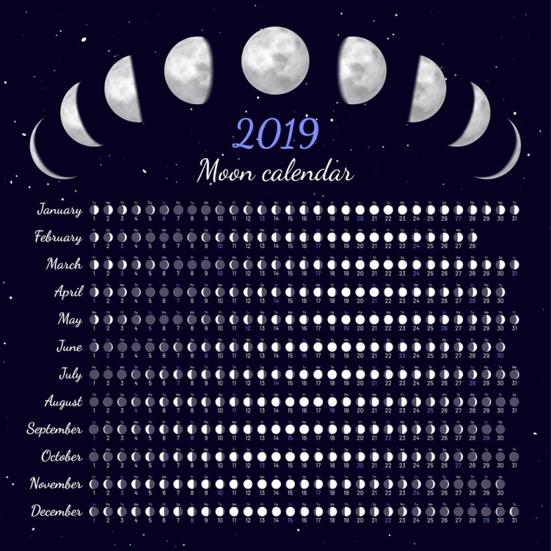 moon phases calendar vector 22359066